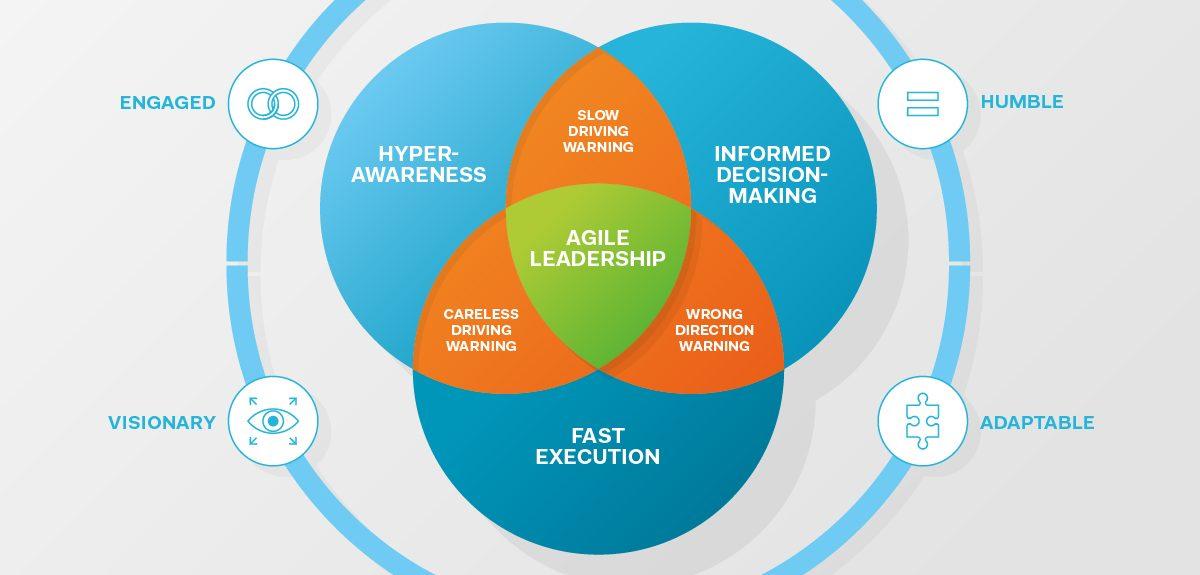 IMD Agile Leadership Framework