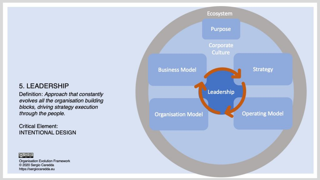 5. Leadership | Organisation Evolution Framework