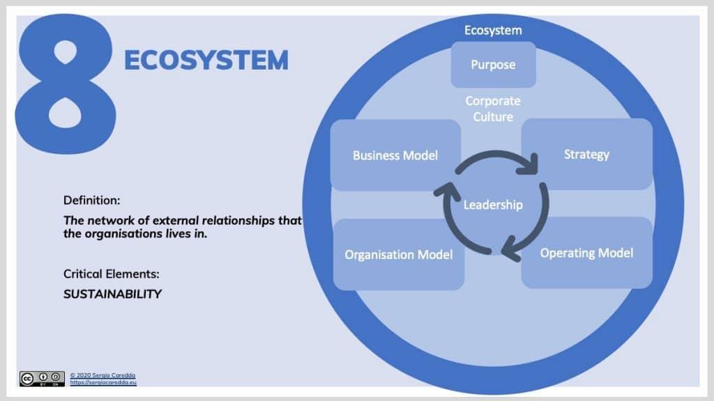 8. Ecosystem | Organisation Evolution Framework