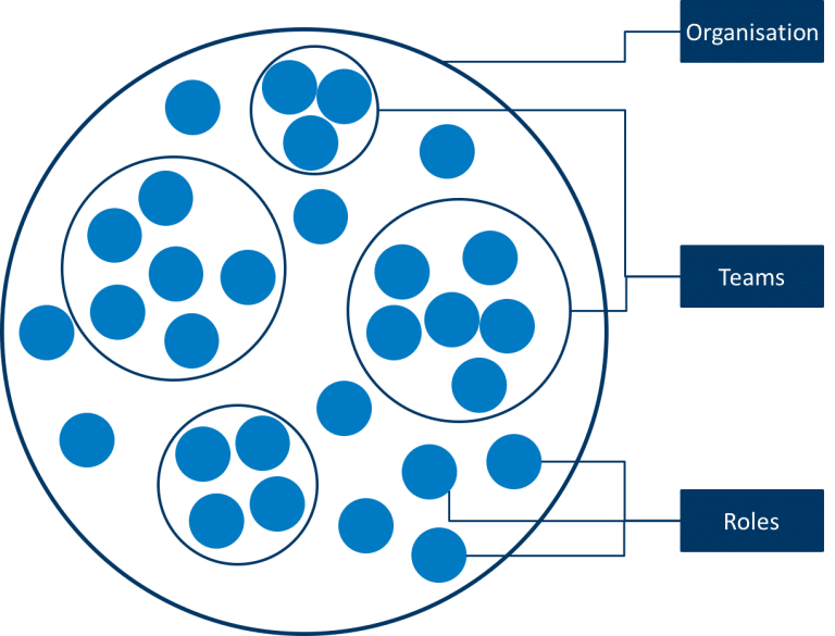 Fig.11: Holacracy Organisational Model