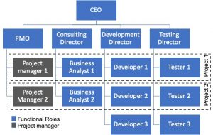 Fig.4: Project-based Organisation Model