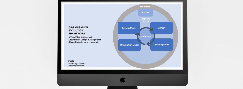 Introducing the Organisation Evolution Framework