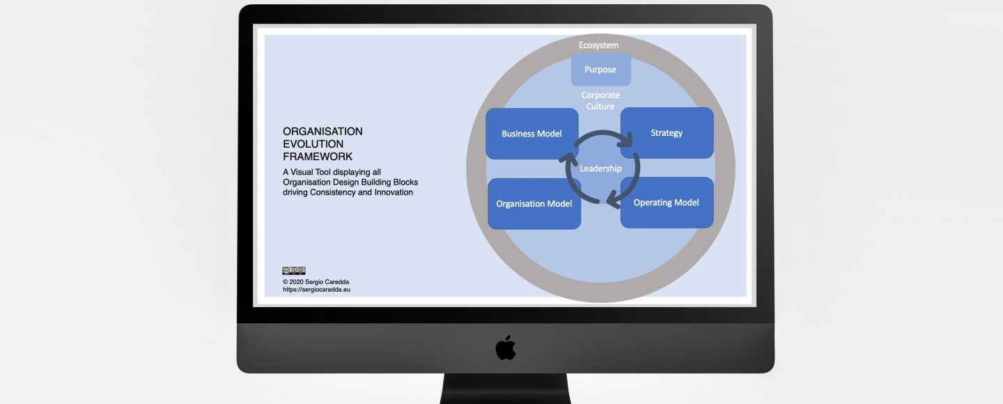 Introducing the Organisation Evolution Framework