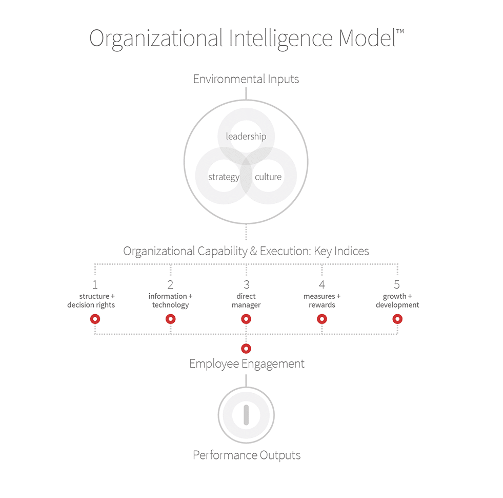 Developing Organisational Intelligence 1