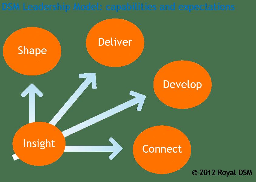 DSM Leadership Model.