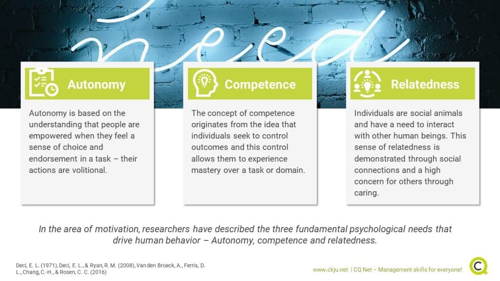 Leadership Components from Self-Determination Theory. Source: CQ-Net (Towler, 2020)