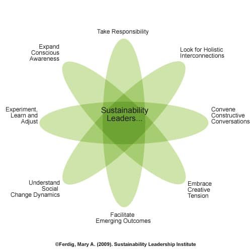 Sustainability Leadership Relational Model (Ferdig, 2009)