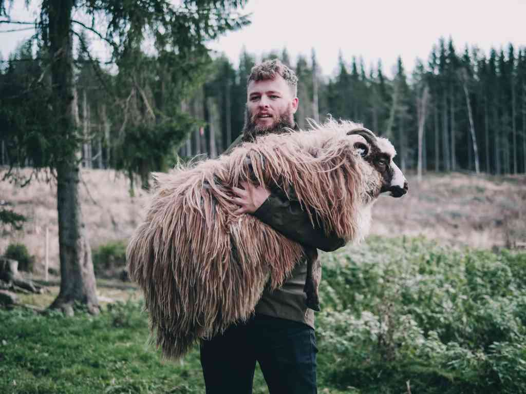 Fig.4: A shepherd in Norway. The Worker Metaphor of the Work as Sustenance Discourse. Photo by FOYN on Unsplash