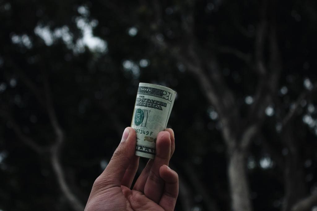 Fig.3: When we think of Work we often immediately think of Remuneration. Photo by Vitaly Taranov on Unsplash