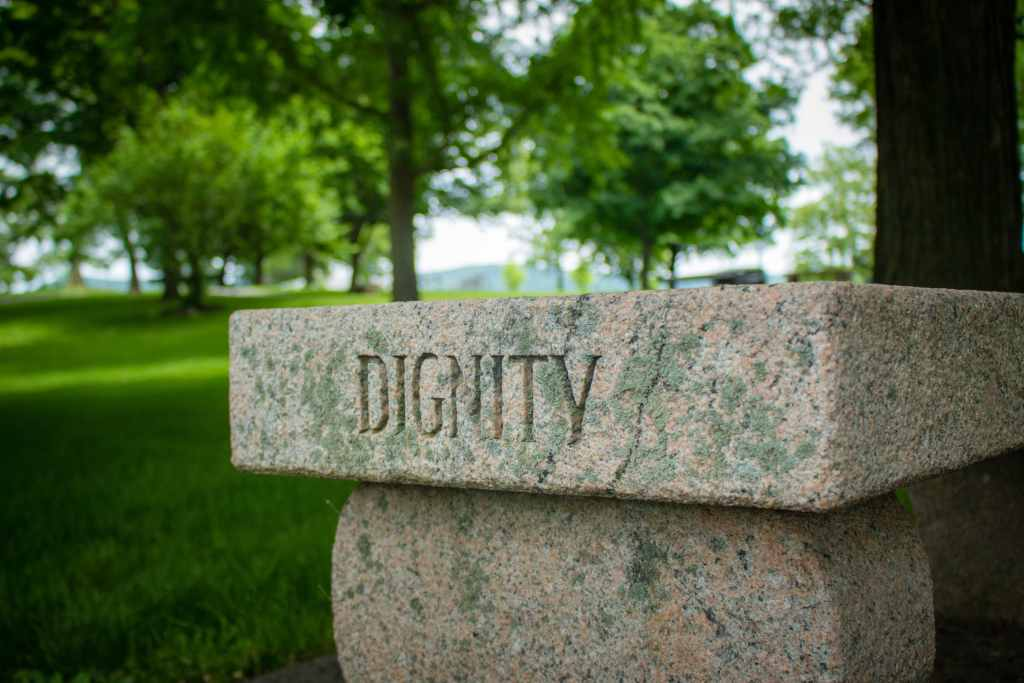 Fig.8: Dignity needs to become the cornerstone of the new Discourse of Work. Photo by Dave Lowe on Unsplash